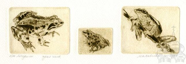makoveeva 3 Frogs