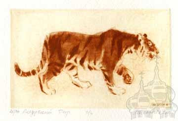 makoveeva Amur Small Tiger